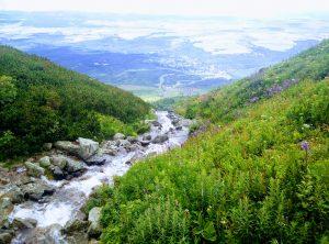Skalnatá dolina