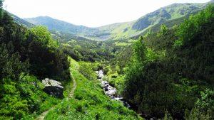 Tichá dolina