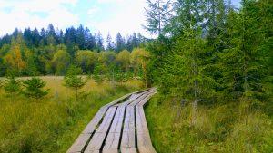 Náučný chodník Juráňova dolina