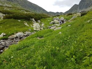 Kôprová dolina