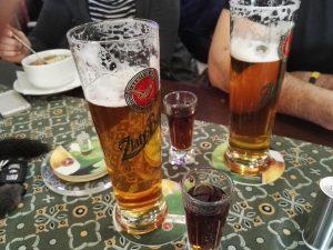 Reštaurácia Plesnivec
